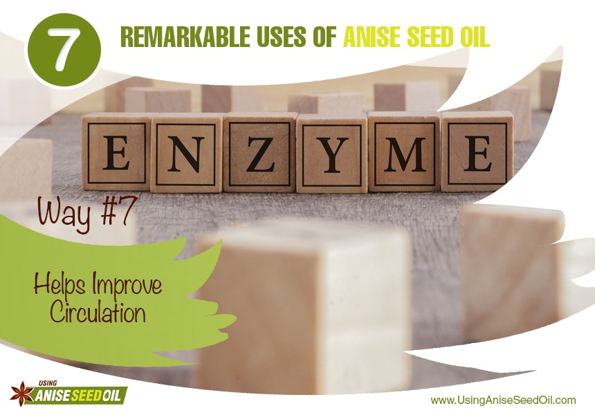 anise seed oil for digestion