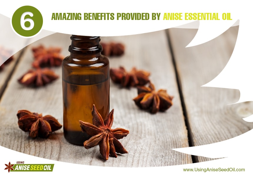 anise seed oil for muscles